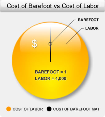 Cost of Barefoot vs Cost of Labor